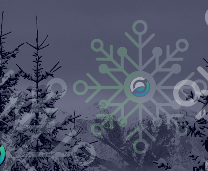 Crypto Winter